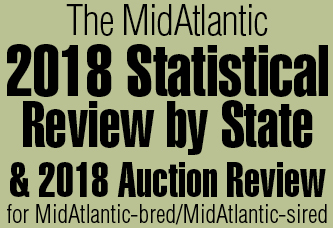 MidAtlantic Statistical Review