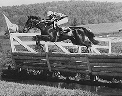 Von Csadek, the top timber horse 25 years ago, won the 1988 Virginia Golc Cup y an astonishing 110 lengths with 16-year-old Patrick Worrall aboard.