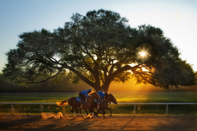Set works at Aiken training center at sunrise