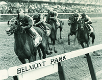 Colonial Affair won 1993 Belmont Stakes