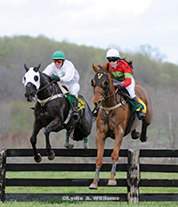 Guts For Garters (left) and Imperial Way  jump the Maryland Hunt Cup's last fence as a team,  with the former prevailing by a nose in the 4-mile classic.