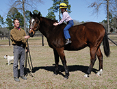 Retired steeplechase stakes winner Hudson Bay, now 23, relaxes  with Arch and Taylor Kingsley at home in South Carolina. Maggie Kimmitt photo