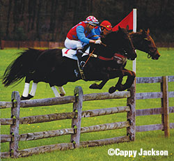 Jay and Billy Meister finish one-two aboard Freeman's Hill and Tom Bob