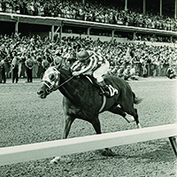 Secretariat winning 1973 Kentucky Derby on the way to his Triple Crown
